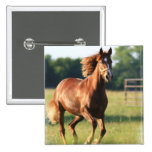 Chestnut Galloping Horse Square Button