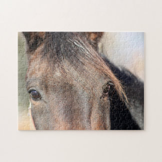 Chestnut horse close up jigsaw puzzle
