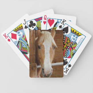 chestnut horse playing cards