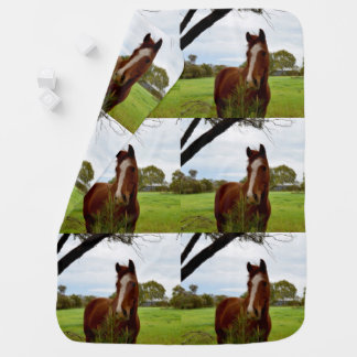 Chestnut Horse Sniffing A Banksia Tree, Baby Blanket