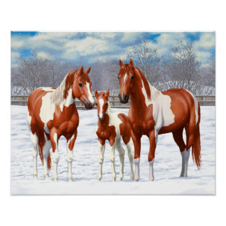 Chestnut Pinto Horses In Snow Poster