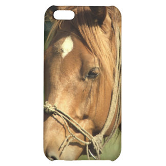 Chestnut Pony iPhone 4 Case