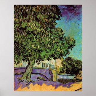 Chestnut Tree in Blossom Poster