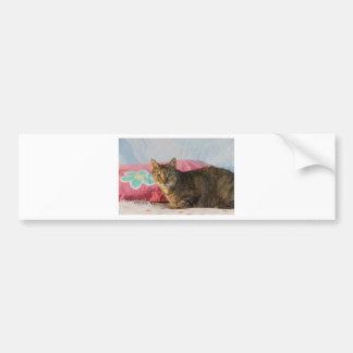 Chevy Bumper Sticker