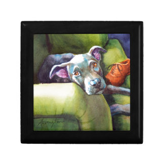 Chew Shoe, Terrier on the Couch Small Square Gift Box