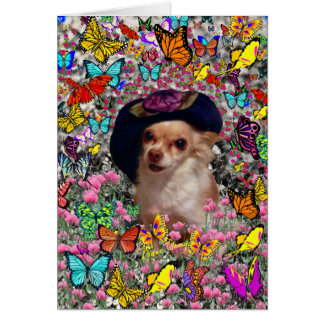 Chi Chi in Butterflies  - Chihuahua Puppy in Hat Greeting Cards