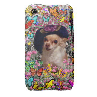 Chi Chi in Butterflies  - Chihuahua Puppy in Hat iPhone 3 Cover
