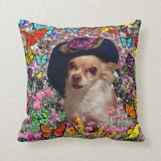Chi Chi in Butterflies  - Chihuahua Puppy in Hat Pillows