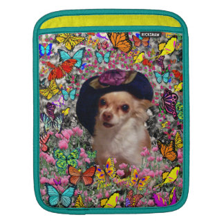 Chi Chi in Butterflies  - Chihuahua Puppy in Hat Sleeves For iPads