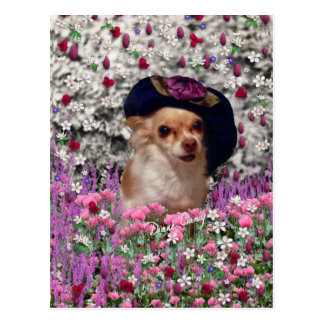 Chi Chi in Flowers  - Chihuahua Puppy in Cute Hat Postcard