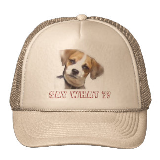 Chi-Weenie Say What ?? Hats