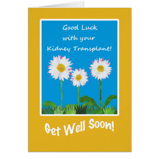 Chic Get Well Card, Kidney Transplant, Daisies Card