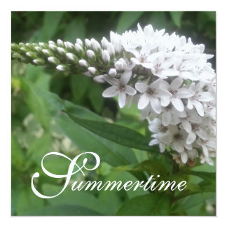"""CHIC INVITATION_""""Summertime"""" WHITE FLORAL 13 Cm X 13 Cm Square Invitation Card"""