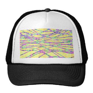 Chic Modern Floral Zebra Style Trendy Pattern Hat