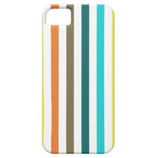 Chic Multicolored Stripes iPhone 5 Cases