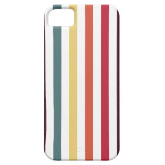 Chic Multicolored Stripes iPhone 5/5S Cases