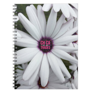 Chica Of All Trades Notebook