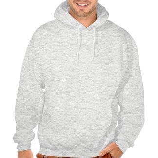 Chicago Illinois Interstate Highway Freeway Road : Hooded Sweatshirt