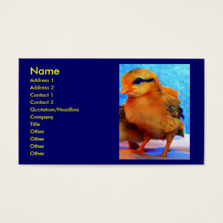Chick-A-Dee-Light I Business Card