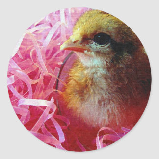 Chick in Wine Glass Classic Round Sticker
