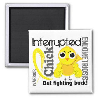 Chick Interrupted 3 Endometriosis Refrigerator Magnet