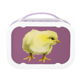 Chick Watercolor Painting Lunch Box