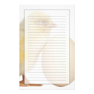 Chick with egg (2 days old) custom stationery