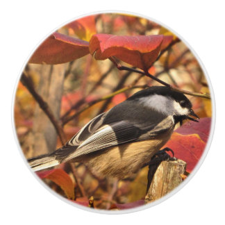 Chickadee Bird in Pink and Red Autumn Leaves Ceramic Knob