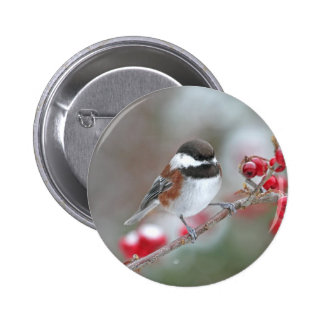 Chickadee in Falling Snow with Red Berries Pinback Button