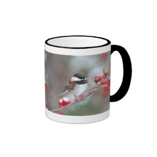 Chickadee in Falling Snow with Red Berries Mugs