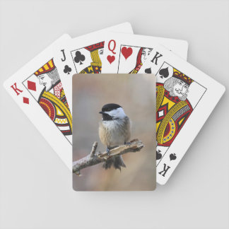 Chickadee Playing Cards