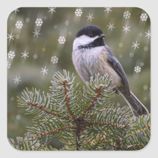 Chickadee Snow Flakes Pine Tree Winter Square Sticker