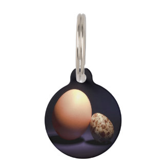 Chicken and quail eggs in love. Add your text. Pet ID Tag