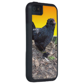 Chicken Dimensions Xtreme SE + iPhone 5/5S Case