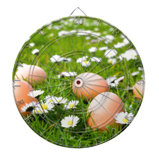 Chicken eggs in grass with daisies dartboards