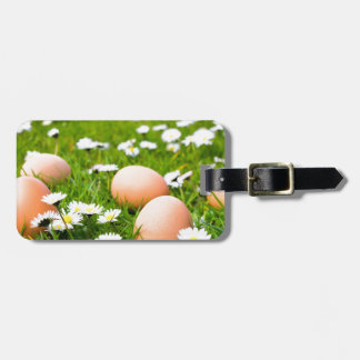 Chicken eggs in grass with daisies luggage tag