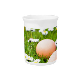 Chicken eggs in grass with daisies pitcher
