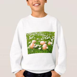 Chicken eggs in grass with daisies sweatshirt