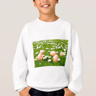 Chicken eggs in grass with daisies sweatshirt
