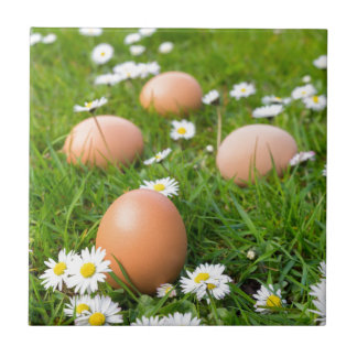 Chicken eggs in spring grass with daisies ceramic tile
