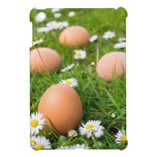 Chicken eggs in spring grass with daisies cover for the iPad mini