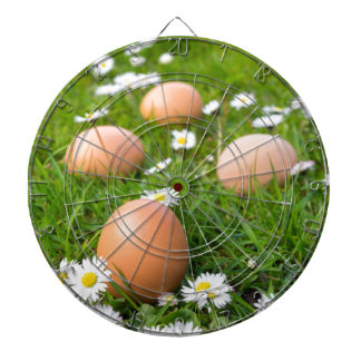 Chicken eggs in spring grass with daisies dartboards