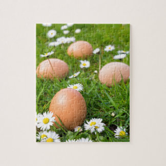 Chicken eggs in spring grass with daisies jigsaw puzzle