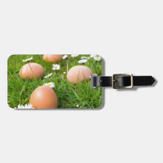 Chicken eggs in spring grass with daisies luggage tag