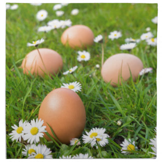 Chicken eggs in spring grass with daisies napkin