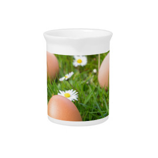 Chicken eggs in spring grass with daisies pitcher