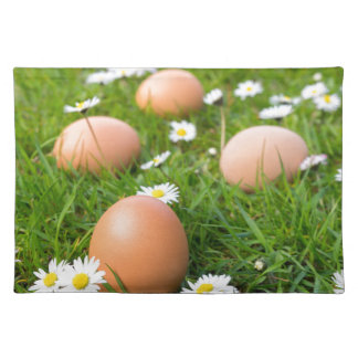 Chicken eggs in spring grass with daisies placemat