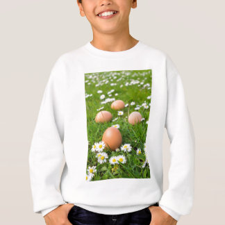 Chicken eggs in spring grass with daisies sweatshirt