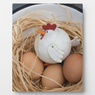 Chicken & eggs plaque