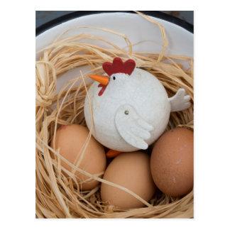 Chicken & eggs postcard